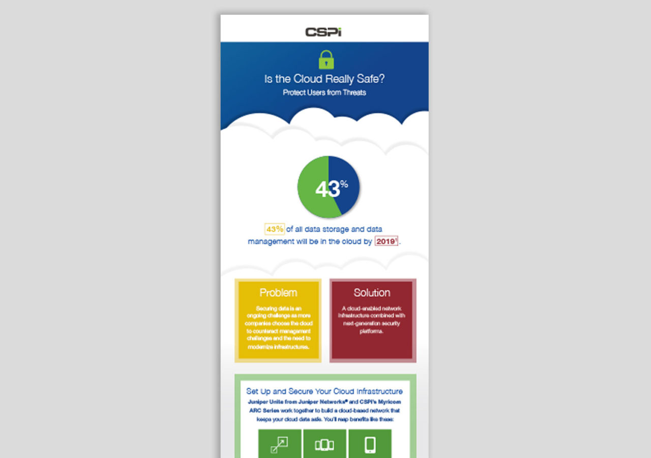 Software Services Infographic
